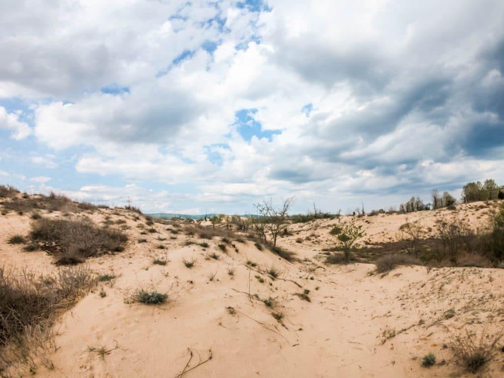 Несебър около Гергьовден - пясъчните дюни, плажът, алеите 1
