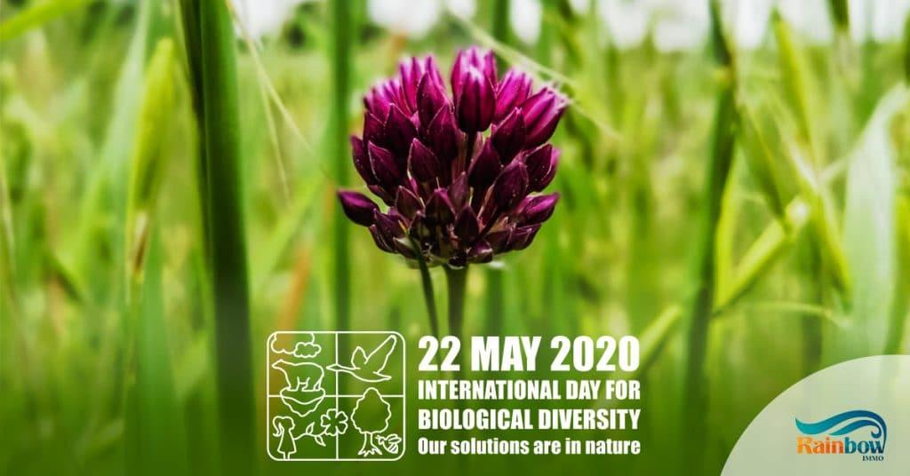 Международен ден на биологичното разнообразие 2020 1